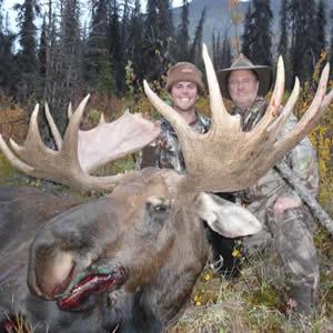 Wrangell Moose