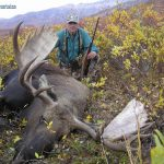 Alaska Moose Hunt with hunter