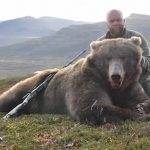 Brown Bear Hunting in Alaska