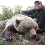 Jesse's Alaska Grizzly Bear