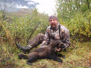 Alaska Wolverine Hunt