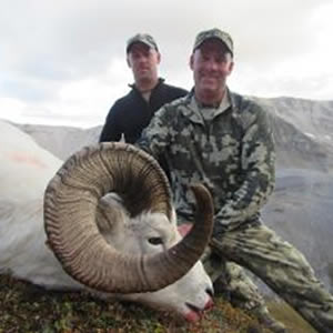 Dall Sheep Hunt
